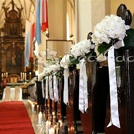 Biel hortensji – Kościół w Dolsku