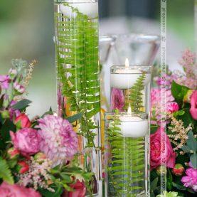 Zieleń paproci, amarantowe kwiaty