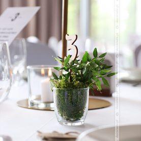 "Numer stolika w temacie ""natura"" – Hotel Navigator"