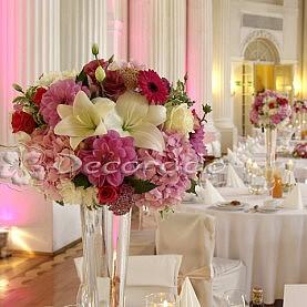 Intensywne kolory kwiatów – odcienie amarantu – Zamek w Rydzynie