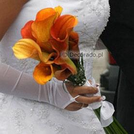 Pomarańczowe eleganckie cantadeskie