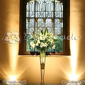 Kwiaty oświetlone światłem reflektorów – Pałac w Wąsowie