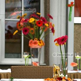 Odważne kolory – taras Restauracji Meridian