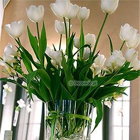 Eleganckie białe tulipany – dekoracja Restauracji Markietanka w Poznaniu