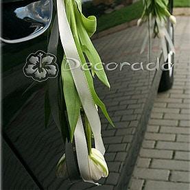 Wiosenne tulipany przy klamkach
