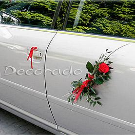 Czerwona róża i zieleń liści