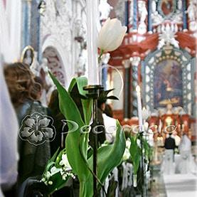 Wiosenne tulipany – dekoracja kościoła Św. Antoniego