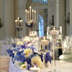 Niebiesko-białe kwiaty w Zamku w Rydzynie